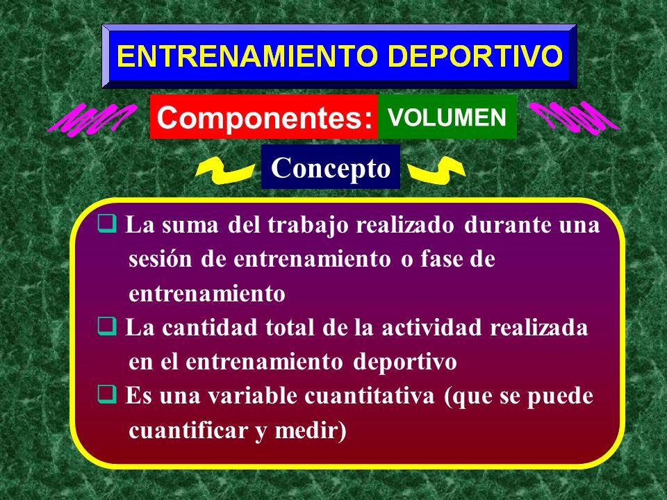 Componentes: Concepto La suma del trabajo realizado durante una