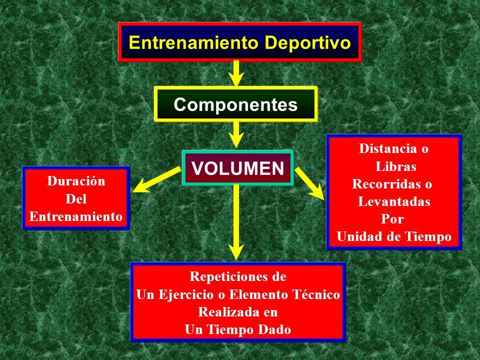 Entrenamiento Deportivo Un Ejercicio o Elemento Técnico