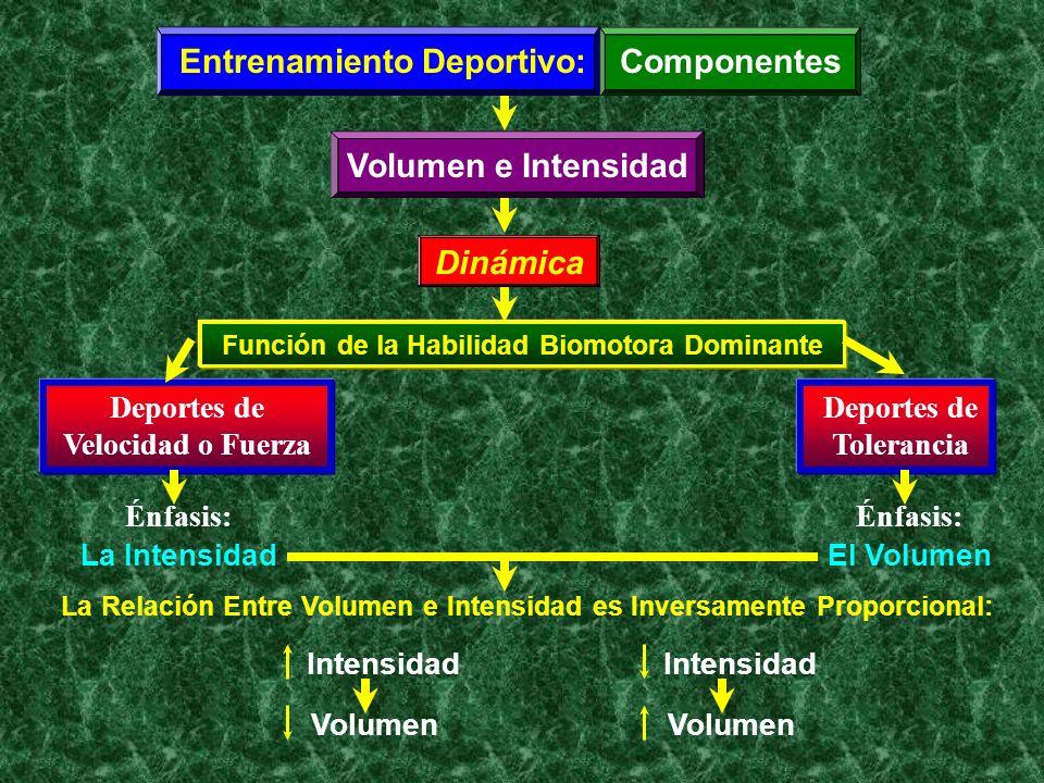 Entrenamiento Deportivo: Componentes Volumen e Intensidad Dinámica