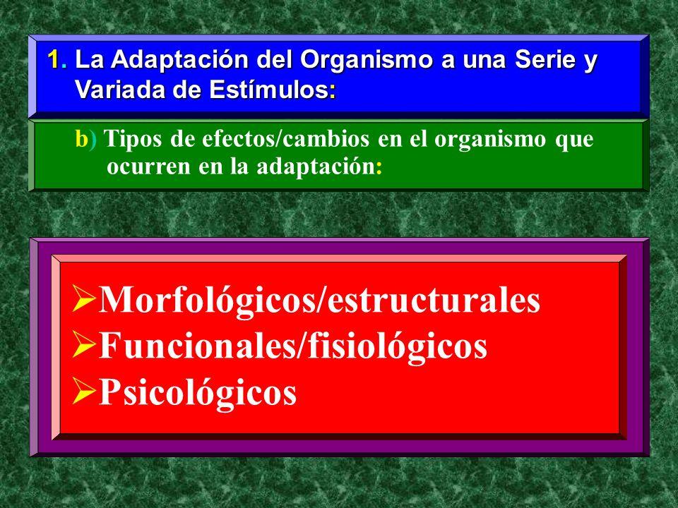 Morfológicos/estructurales Funcionales/fisiológicos Psicológicos