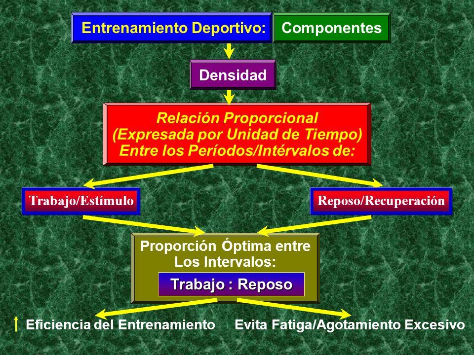 Entrenamiento Deportivo: Componentes