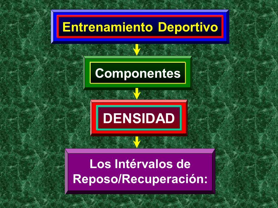 Entrenamiento Deportivo Reposo/Recuperación: