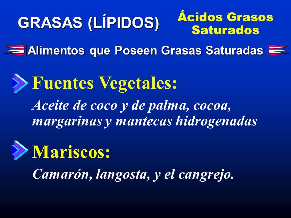 Alimentos que Poseen Grasas Saturadas