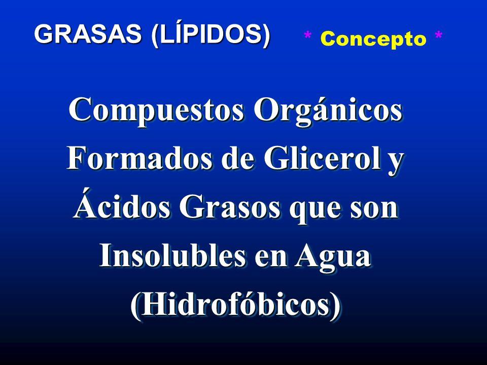 Compuestos Orgánicos Formados de Glicerol y Ácidos Grasos que son