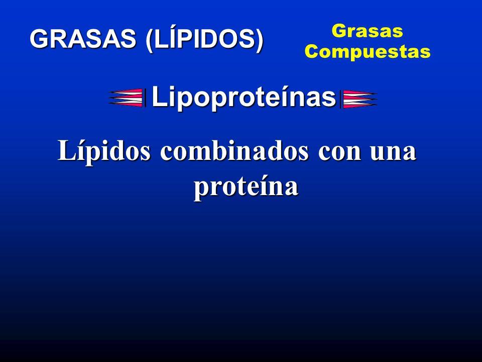 Lípidos combinados con una proteína