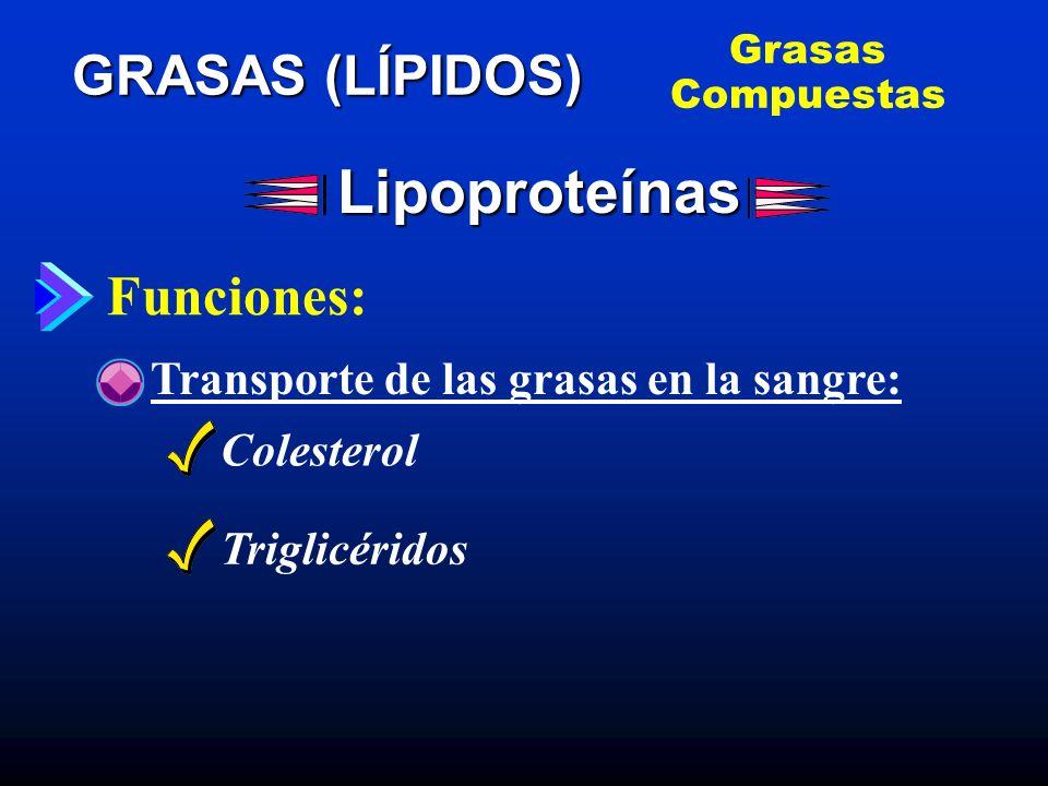 Lipoproteínas Colesterol Triglicéridos GRASAS (LÍPIDOS) Funciones: