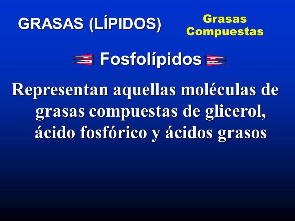 Grasas CompuestasGRASAS (LÍPIDOS) Fosfolípidos.