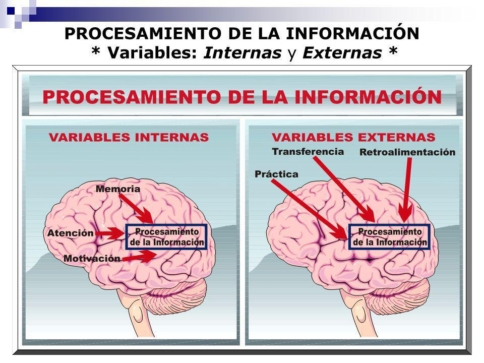 PROCESAMIENTO DE LA INFORMACIÓN * Variables: Internas y Externas *