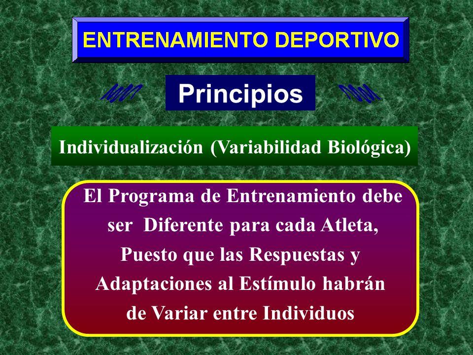 Principios El Programa de Entrenamiento debe