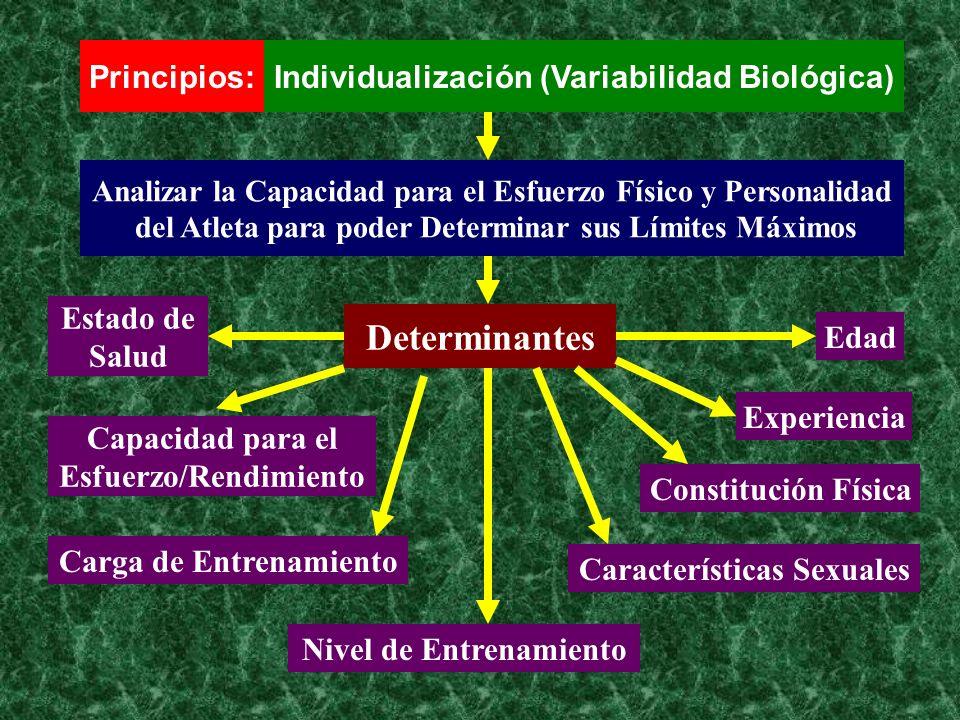 Determinantes Principios: Individualización (Variabilidad Biológica)