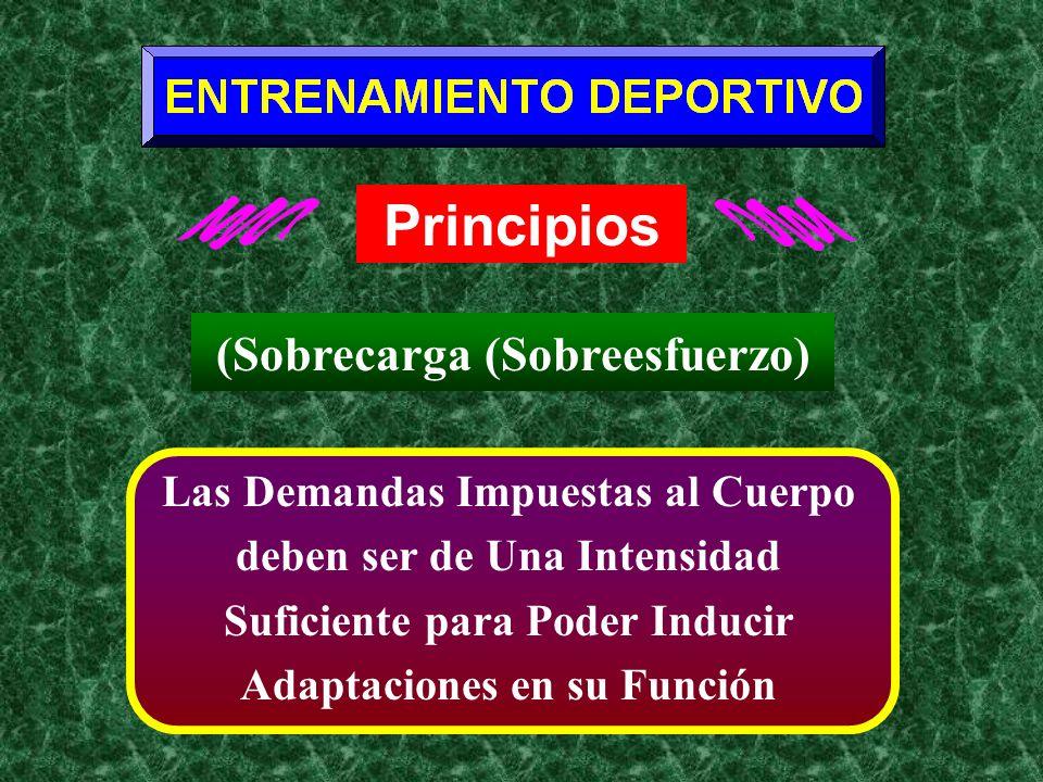 Principios (Sobrecarga (Sobreesfuerzo)