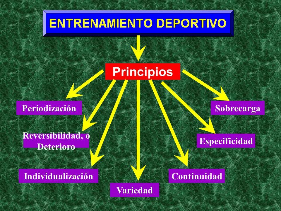 Principios Periodización Sobrecarga Reversibilidad, o Deterioro