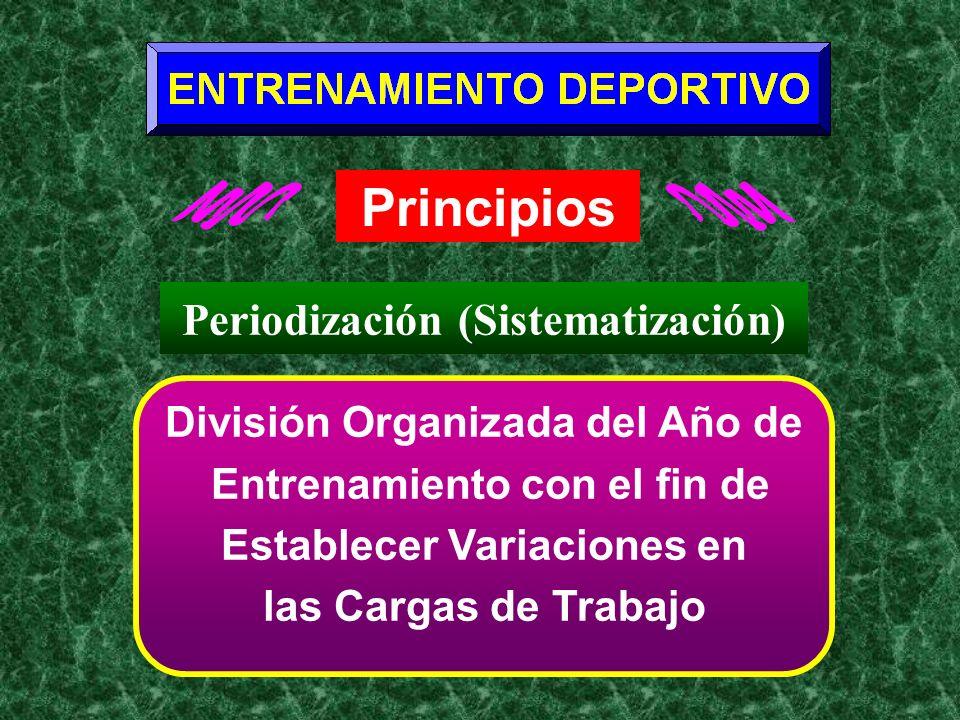 Principios Periodización (Sistematización)