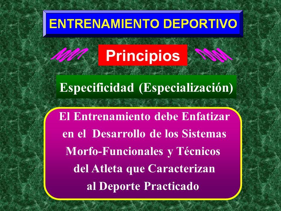 Principios Especificidad (Especialización)