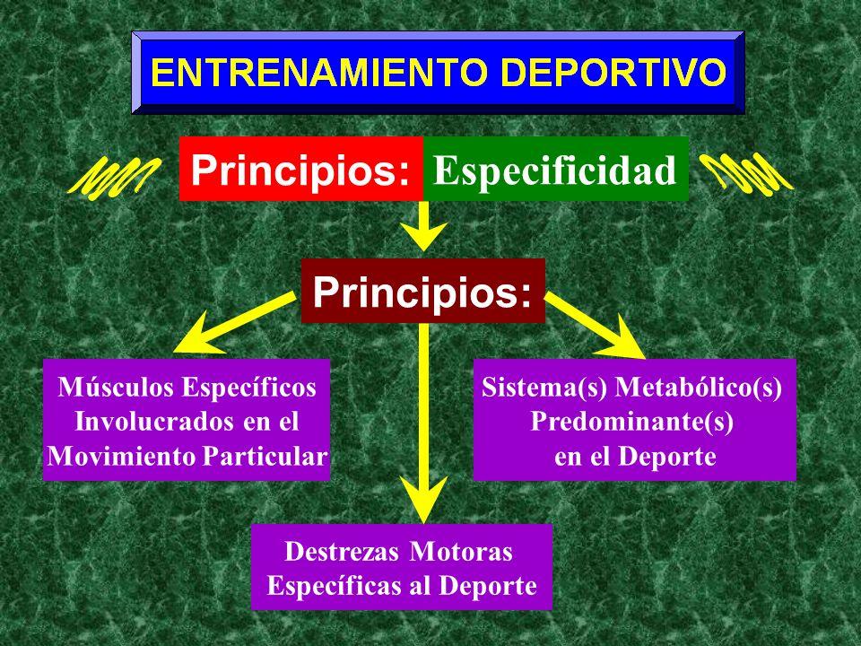 Movimiento Particular Sistema(s) Metabólico(s) Específicas al Deporte
