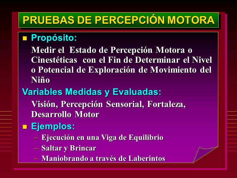 PRUEBAS DE PERCEPCIÓN MOTORA