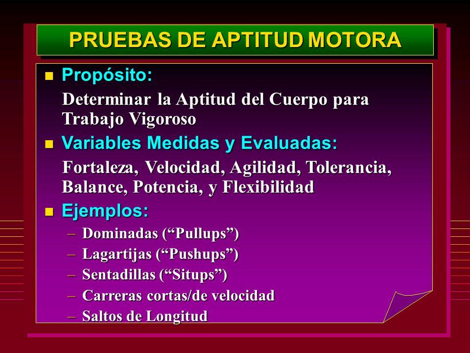 PRUEBAS DE APTITUD MOTORA