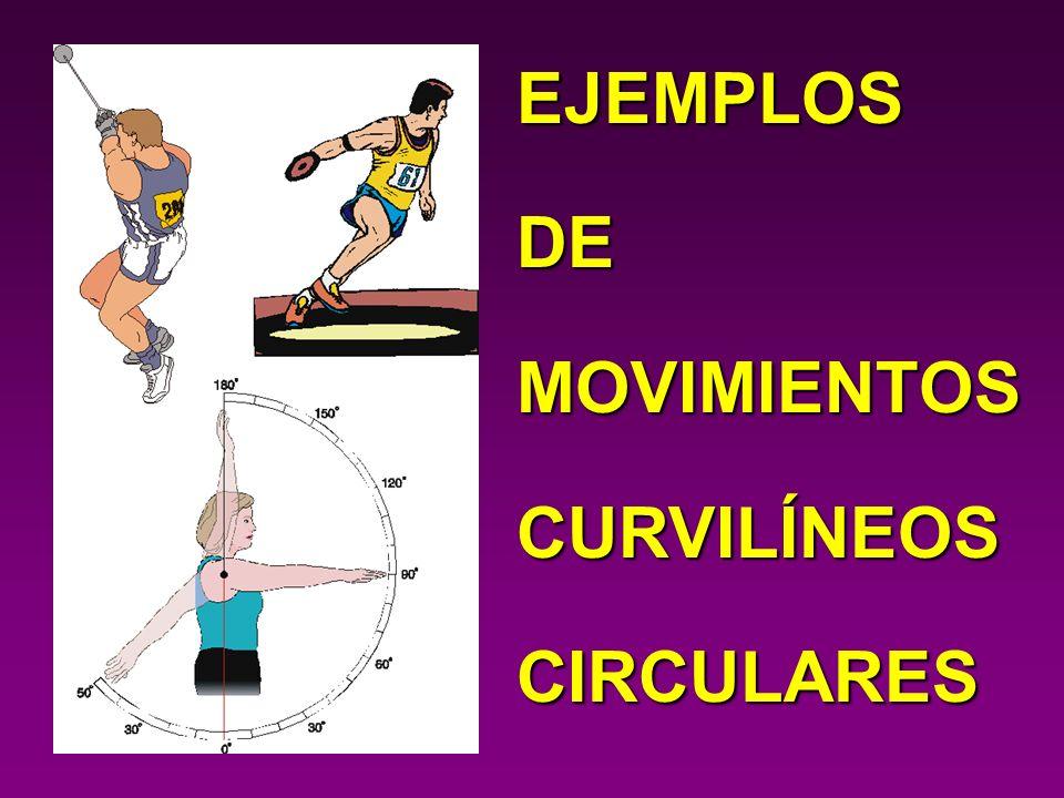 EJEMPLOS DE MOVIMIENTOS CURVILÍNEOS CIRCULARES