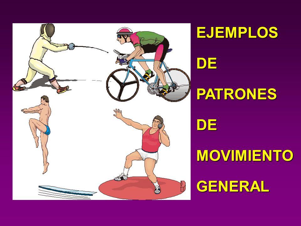 EJEMPLOS DE PATRONES MOVIMIENTO GENERAL