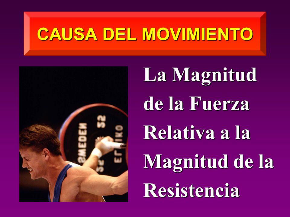 La Magnitud de la Fuerza Relativa a la Magnitud de la Resistencia