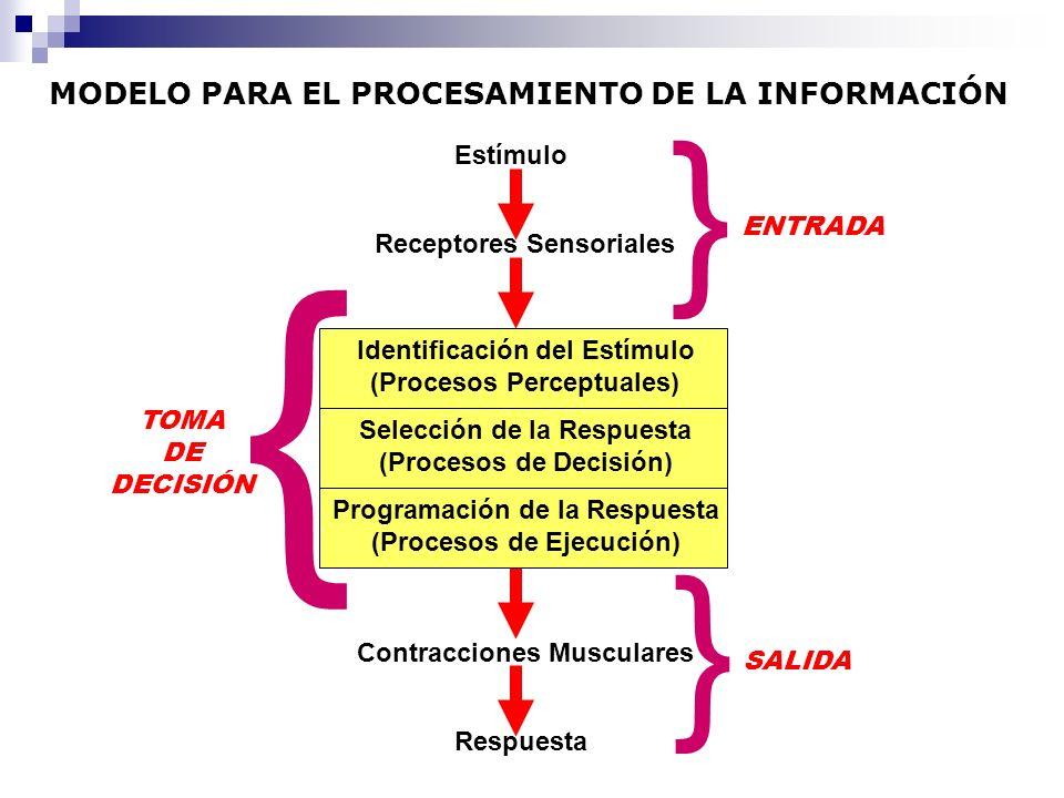 MODELO PARA EL PROCESAMIENTO DE LA INFORMACIÓN