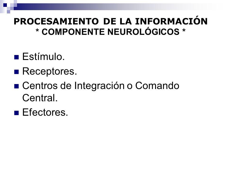 PROCESAMIENTO DE LA INFORMACIÓN * COMPONENTE NEUROLÓGICOS *