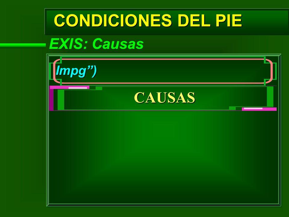 CONDICIONES DEL PIE CAUSAS EXIS: Causas Impg )