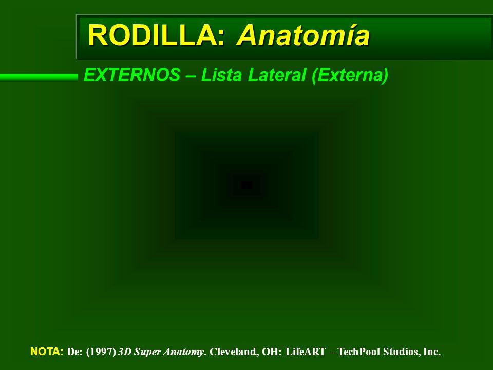 RODILLA: Anatomía EXTERNOS – Lista Lateral (Externa)