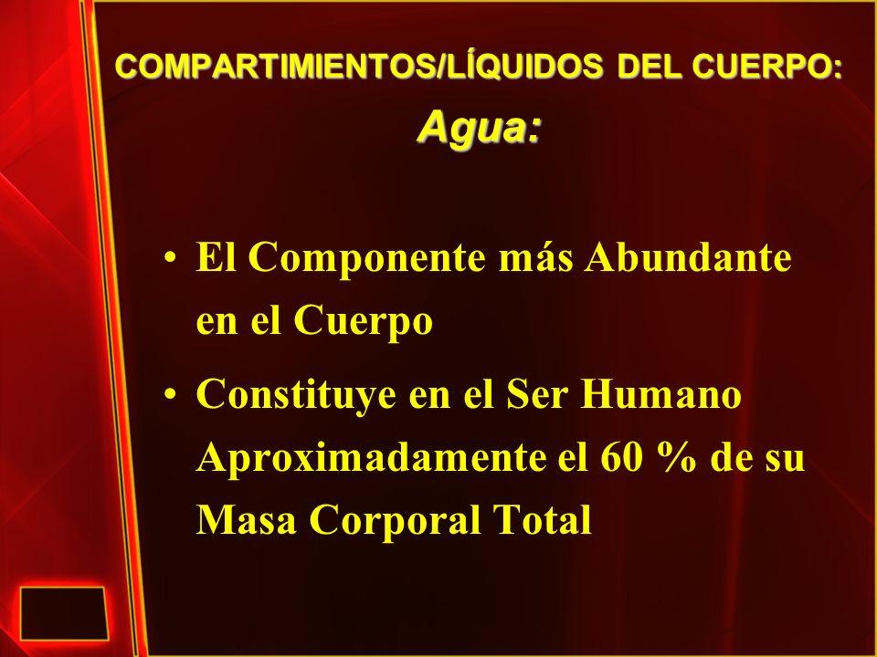 COMPARTIMIENTOS/LÍQUIDOS DEL CUERPO: Agua: