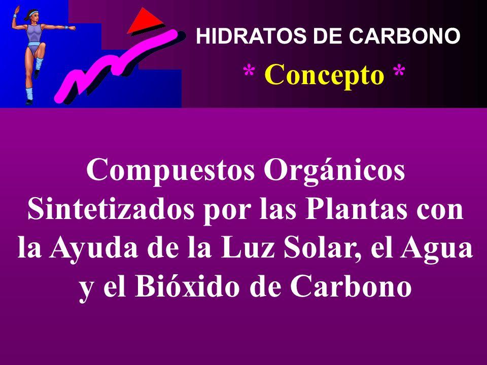 HIDRATOS DE CARBONO * Concepto * Compuestos Orgánicos Sintetizados por las Plantas con la Ayuda de la Luz Solar, el Agua y el Bióxido de Carbono.
