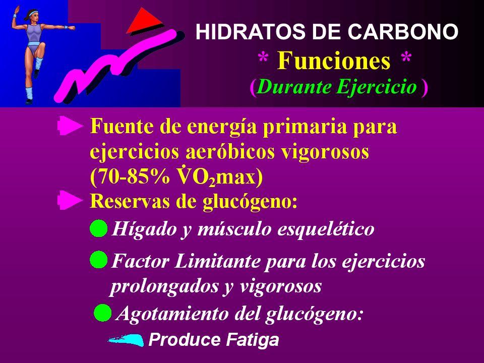 HIDRATOS DE CARBONO * Funciones * (Durante Ejercicio )