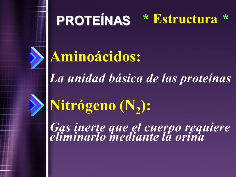Aminoácidos: La unidad básica de las proteínas