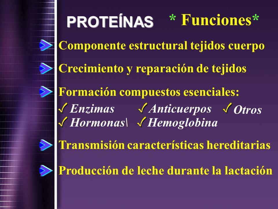 Enzimas Anticuerpos Otros Hormonas\ Hemoglobina * Funciones* PROTEÍNAS