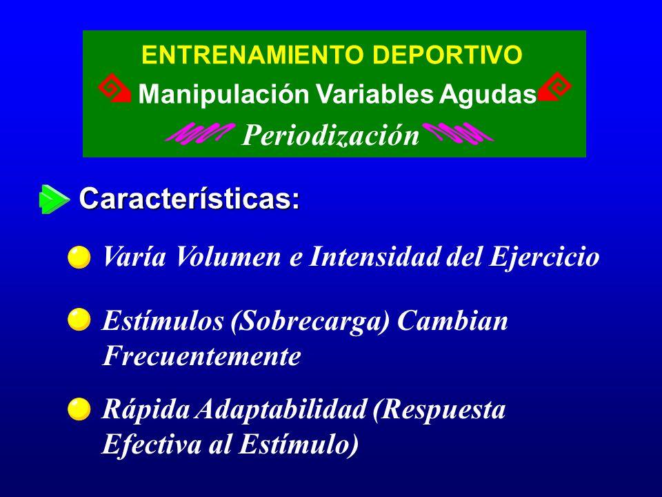 Periodización Características: