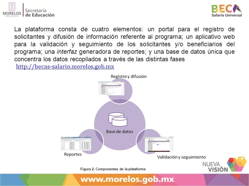 La plataforma consta de cuatro elementos: un portal para el registro de solicitantes y difusión de información referente al programa; un aplicativo web para la validación y seguimiento de los solicitantes y/o beneficiarios del programa; una interfaz generadora de reportes; y una base de datos única que concentra los datos recopilados a través de las distintas fases