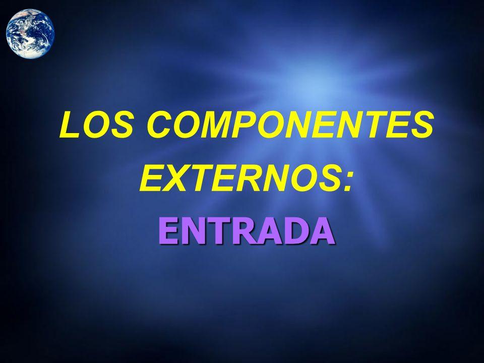 LOS COMPONENTES EXTERNOS: ENTRADA
