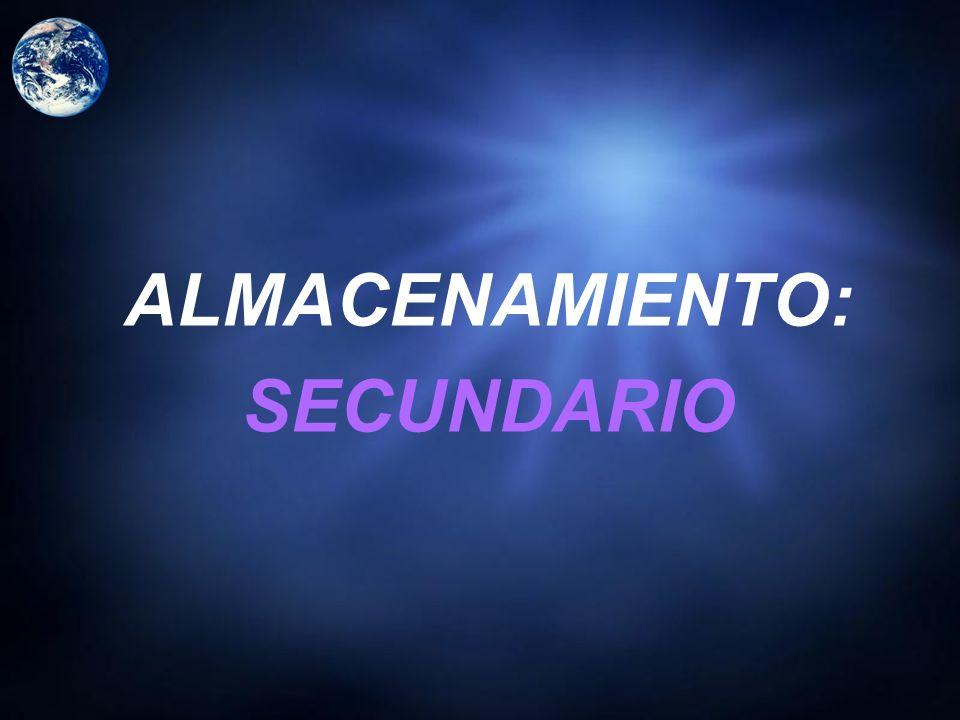 ALMACENAMIENTO: SECUNDARIO