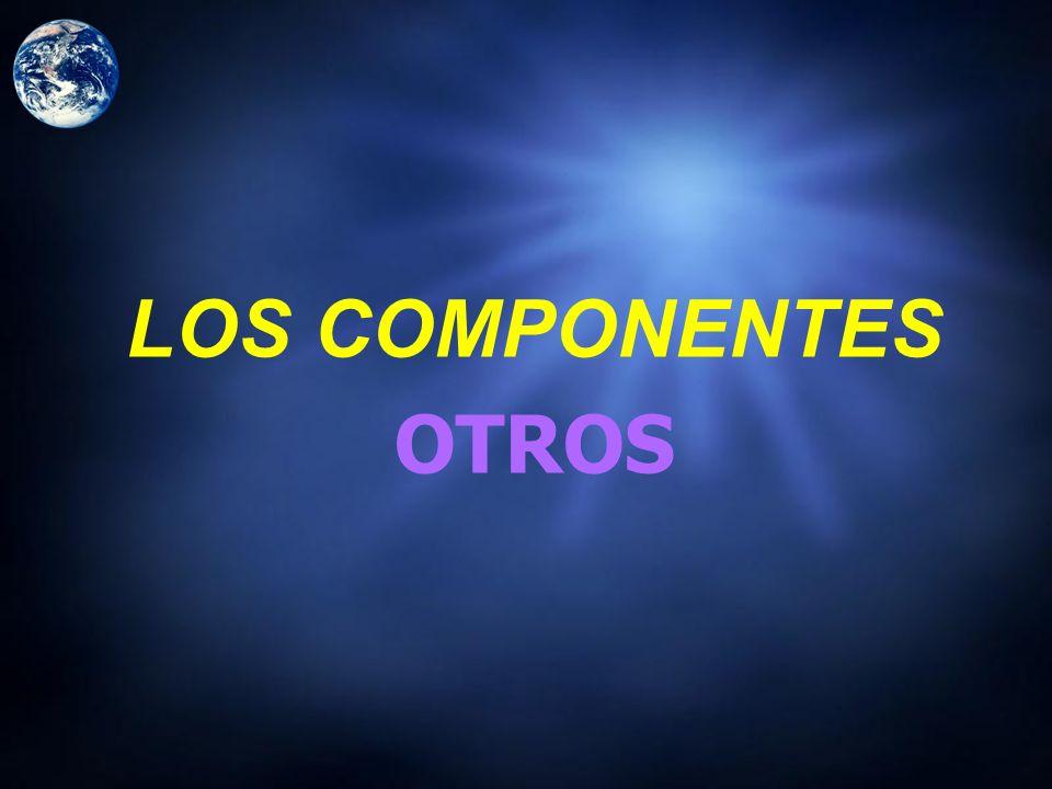 LOS COMPONENTES OTROS