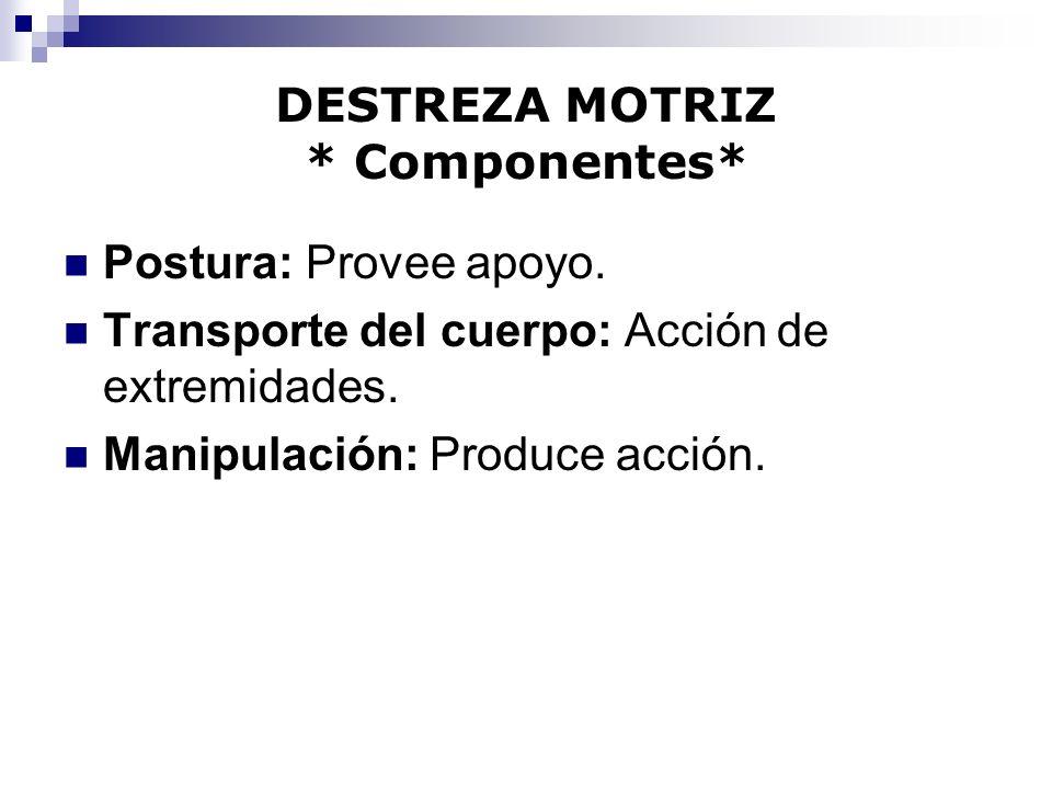 DESTREZA MOTRIZ * Componentes*