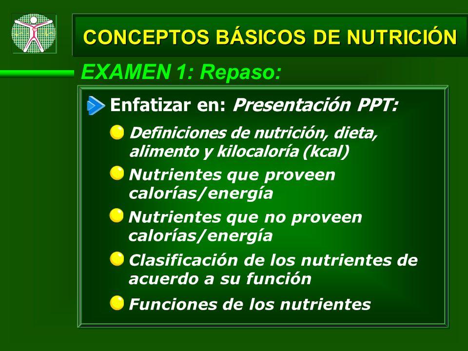 EXAMEN 1: Repaso: CONCEPTOS BÁSICOS DE NUTRICIÓN