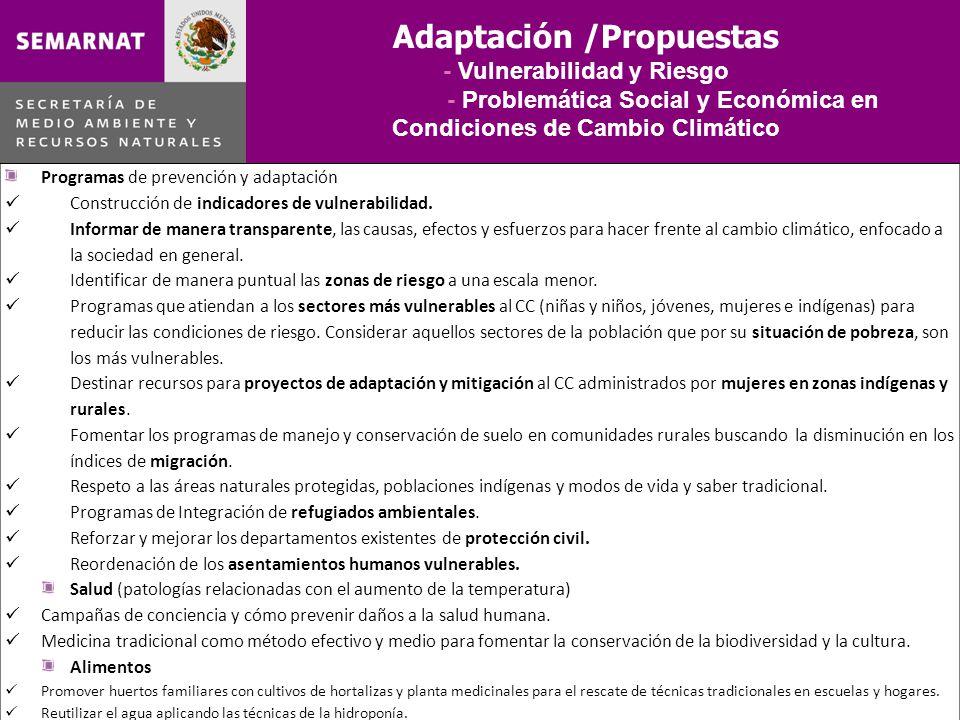 Adaptación /Propuestas