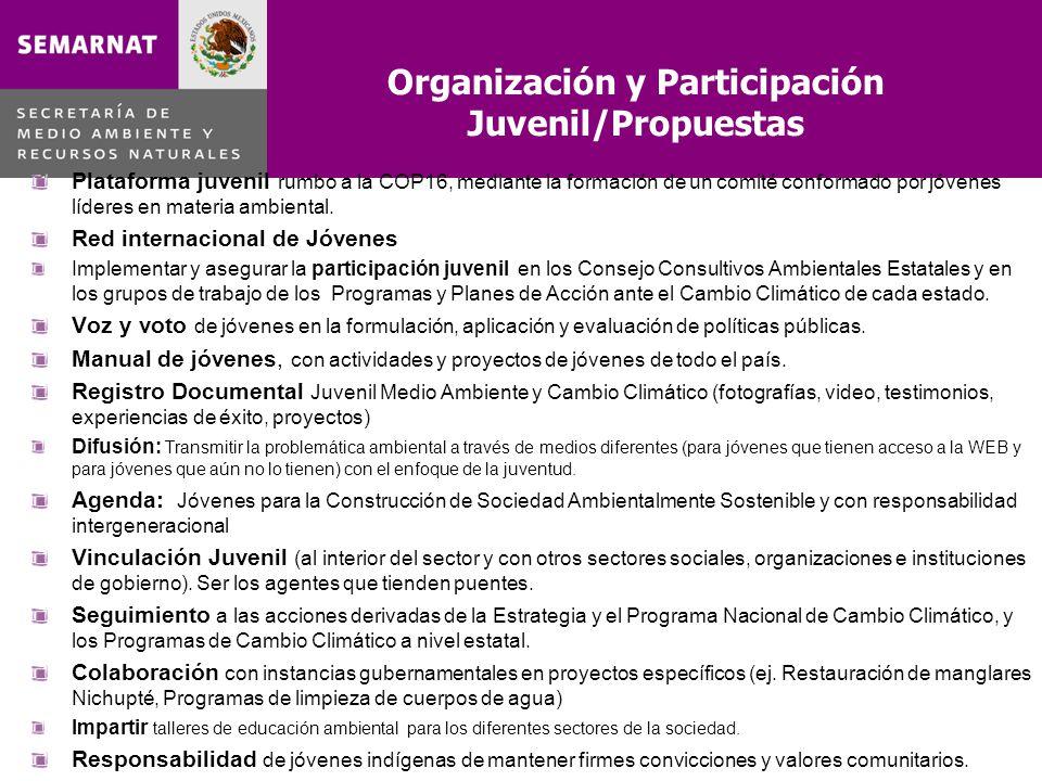 Organización y Participación Juvenil/Propuestas