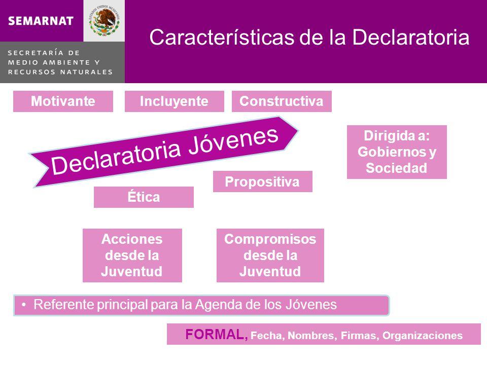 Características de la Declaratoria