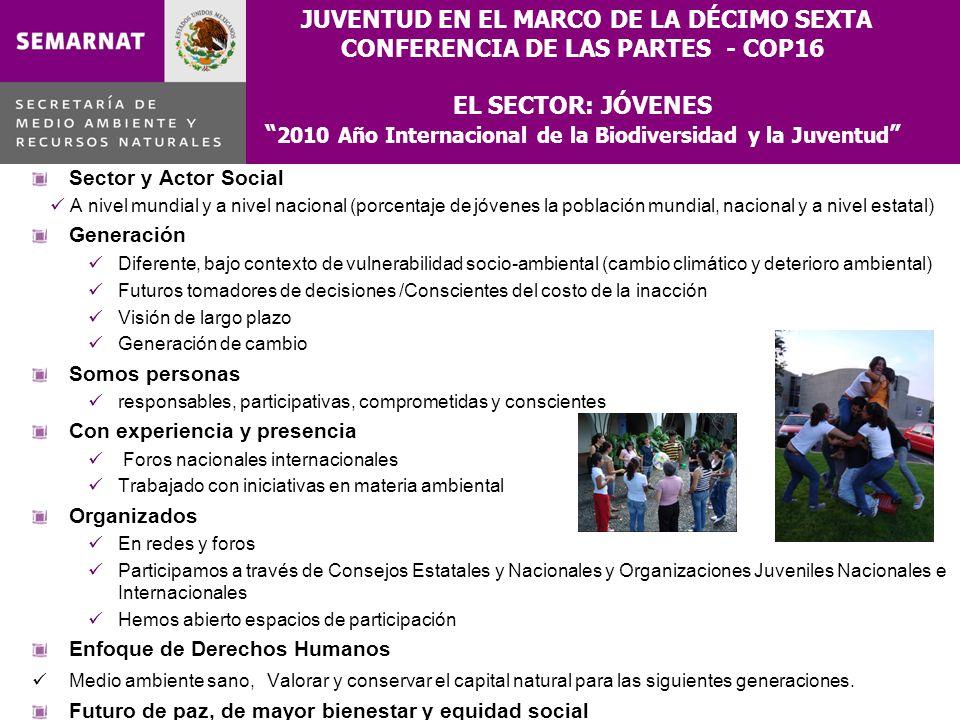 JUVENTUD EN EL MARCO DE LA DÉCIMO SEXTA CONFERENCIA DE LAS PARTES - COP16 EL SECTOR: JÓVENES 2010 Año Internacional de la Biodiversidad y la Juventud