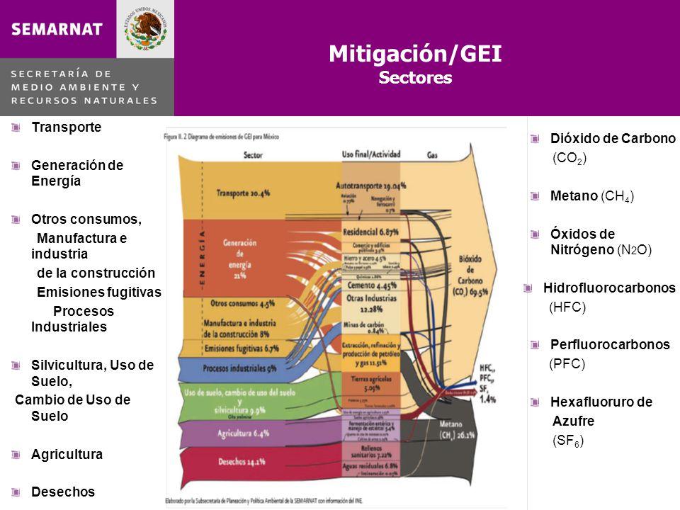 Mitigación/GEI Sectores Transporte Dióxido de Carbono