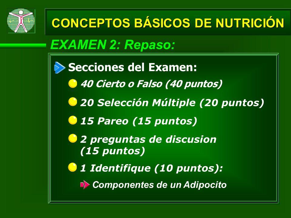 EXAMEN 2: Repaso: CONCEPTOS BÁSICOS DE NUTRICIÓN Secciones del Examen: