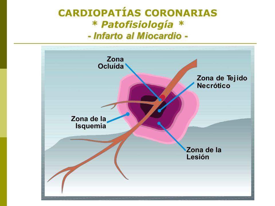 CARDIOPATÍAS CORONARIAS * Patofisiología * - Infarto al Miocardio -