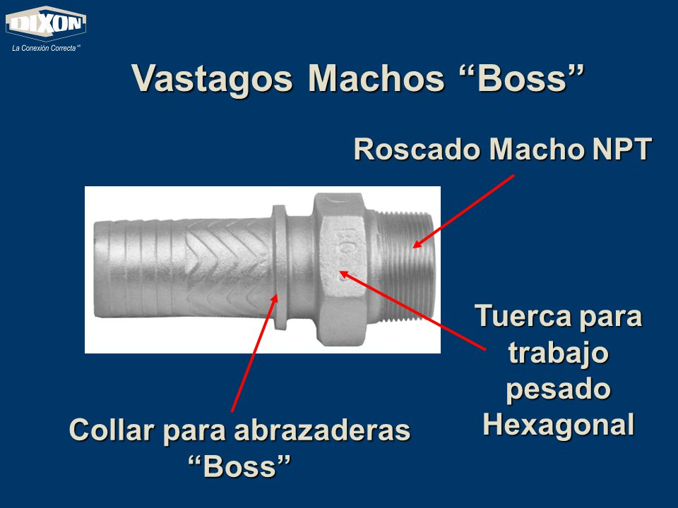 Vastagos Machos Boss