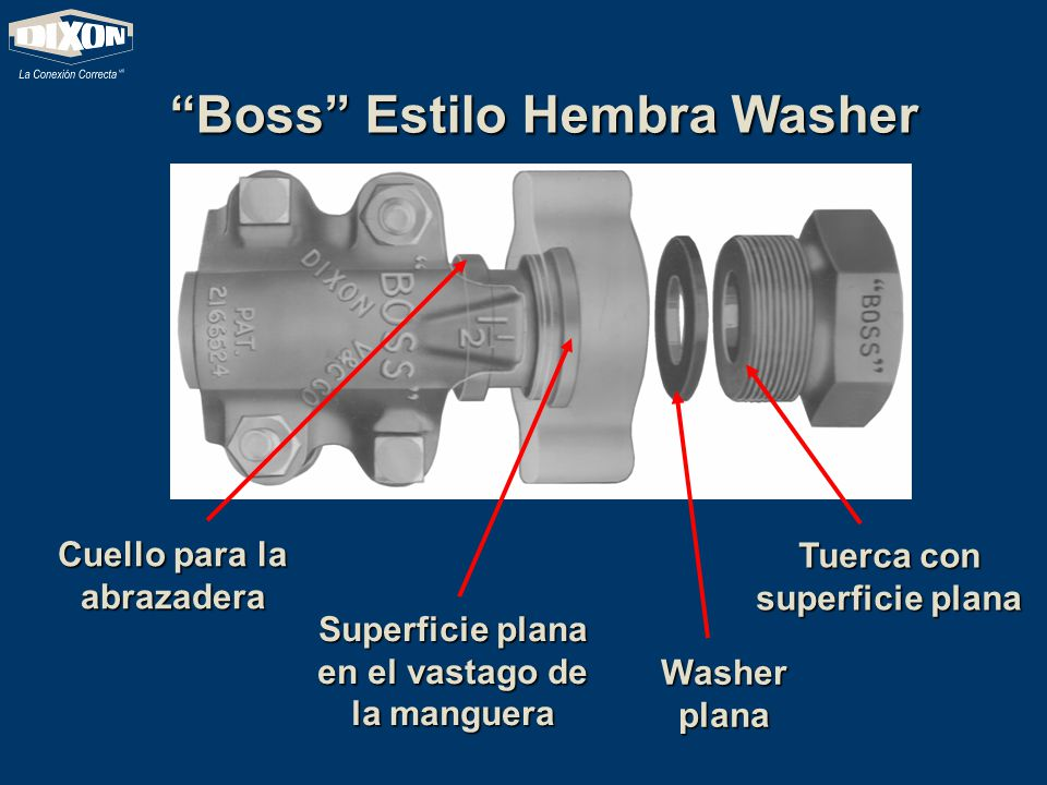 Boss Estilo Hembra Washer