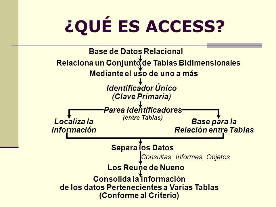 ¿QUÉ ES ACCESS Base de Datos Relacional